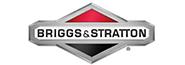 Vezi Lista Completa Briggs&Stratton